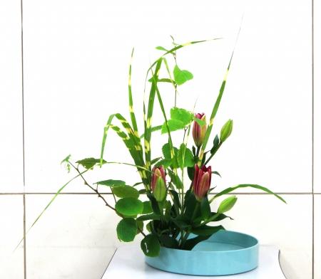 DSC00813-盛り花150615