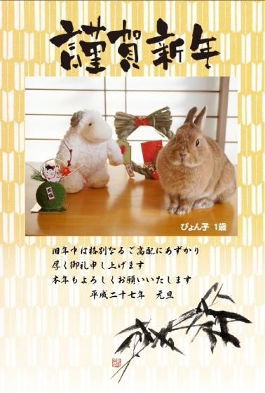 ぴょん子150104_08