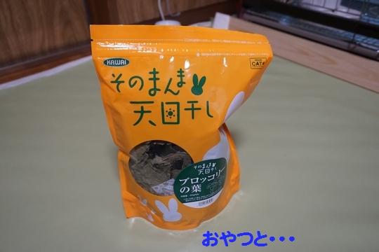 ぴょん子150212_10