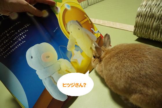 ぴょん子150604_04