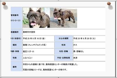 動物愛護センター04