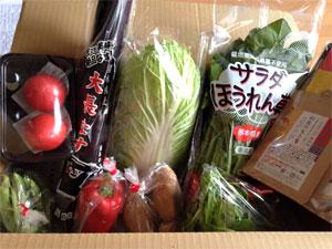150602kyushuyasai1.jpg