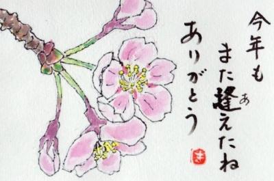 img004桜