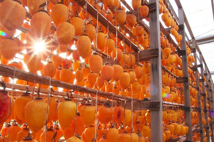 干し柿の季節
