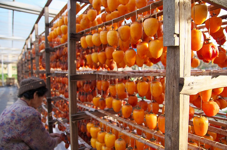 干し柿の季節 3