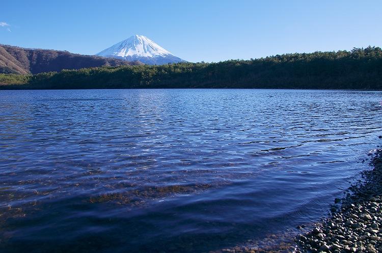 湖畔に佇む