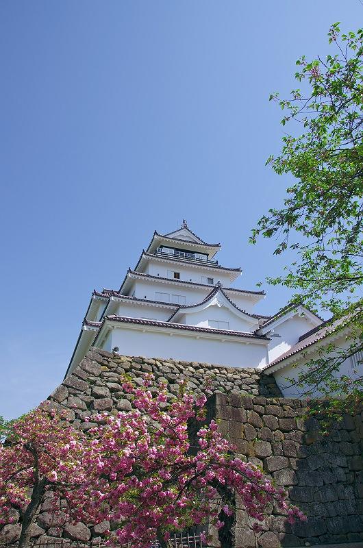 鶴ケ城 参