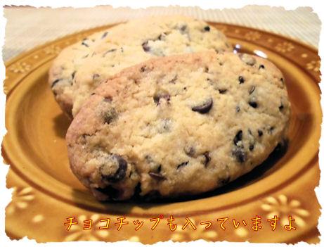 カカオを焙煎して砕いたものとチョコチップ入りクッキー