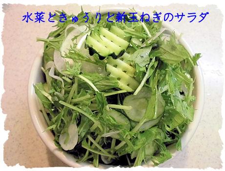 水菜はおいしいね~