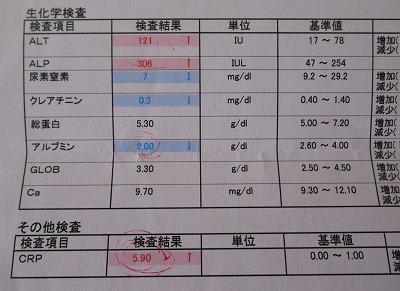 2015-05-30-04.jpg