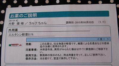 2015-06-03-19.jpg
