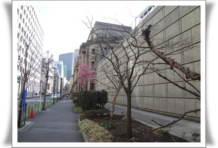 日本橋DSC05462