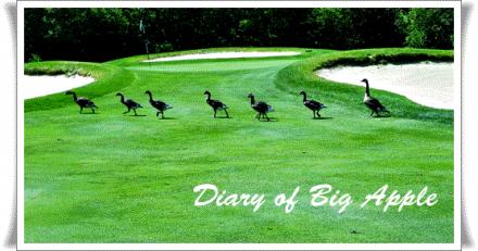golfクラブで