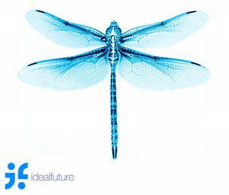 20150401a_Dragonfly_03.jpg