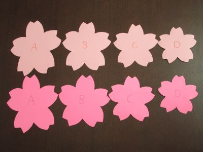 s_桜菜の花1