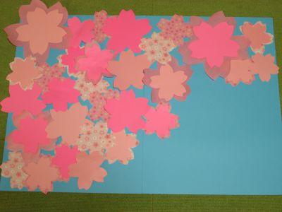 s_桜菜の花11