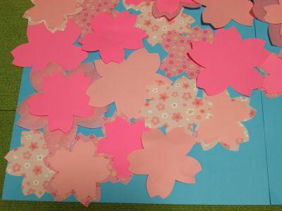 s_桜菜の花13