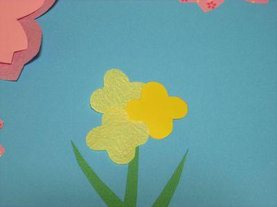 s_桜菜の花15