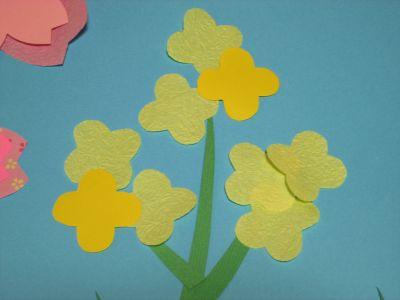 s_桜菜の花16