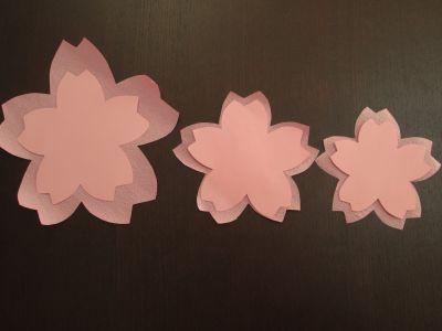 s_桜菜の花19