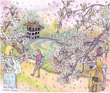 完成御苑桜ブログ用