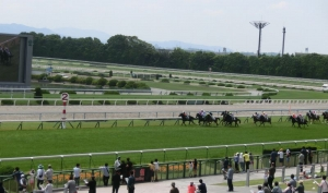 150524京都競馬場2