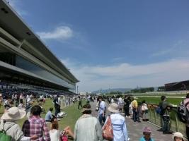 150524京都競馬場1