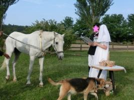 150530結婚式2