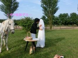 150530結婚式3