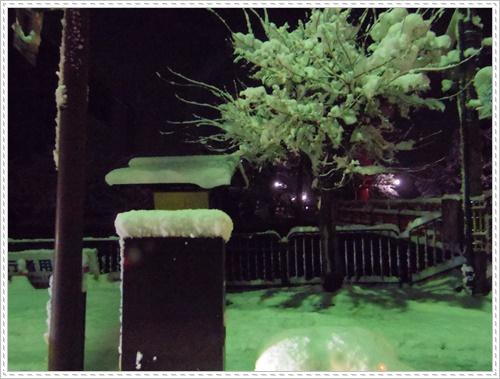 雪IMGP1958-20150101