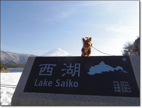 富士山IMGP2230-20150211