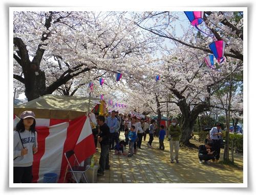 3月31日の桜IMGP2499-20150331