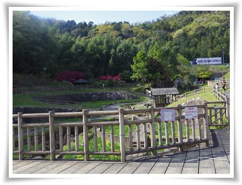 ツツジと赤塚IMGP2555-20150411-150954