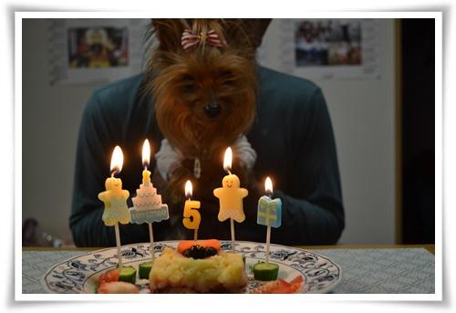 5歳の誕生日DSC_0432-20150414-183103
