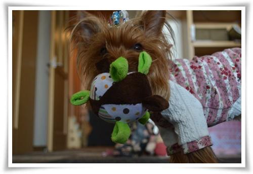 おもちゃDSC_0451-20150421