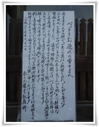 ちょこら初四国IMGP2717-20150502