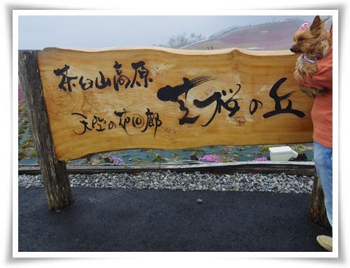 茶臼山高原IMGP2876-20150516