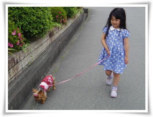 姫路へIMGP2930-20150523