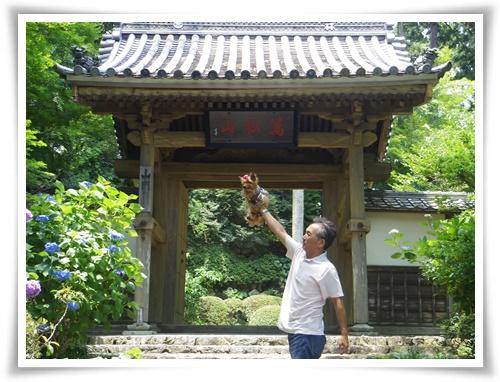 龍潭寺IMGP3114-20150613