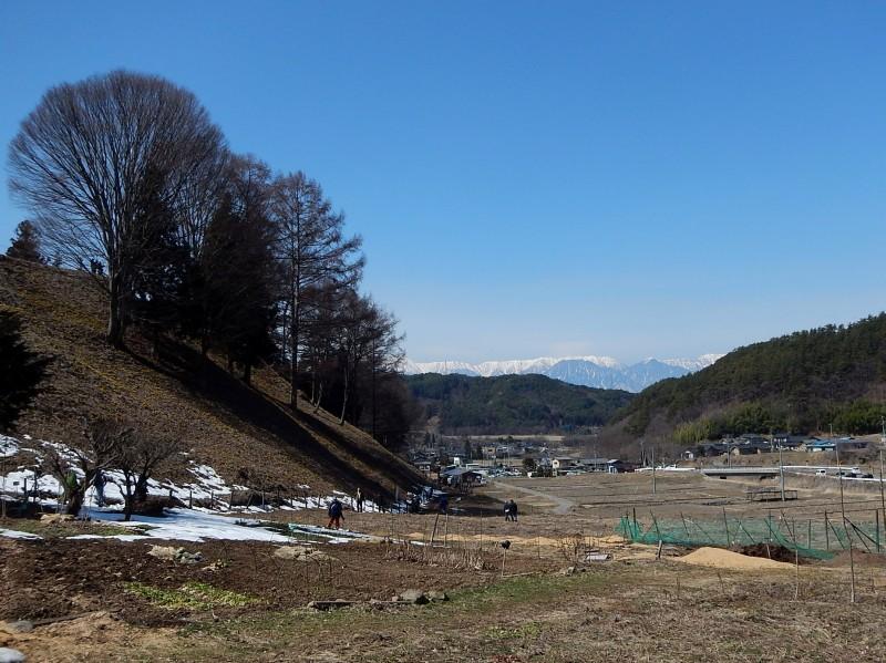 1503_fukujusou_01