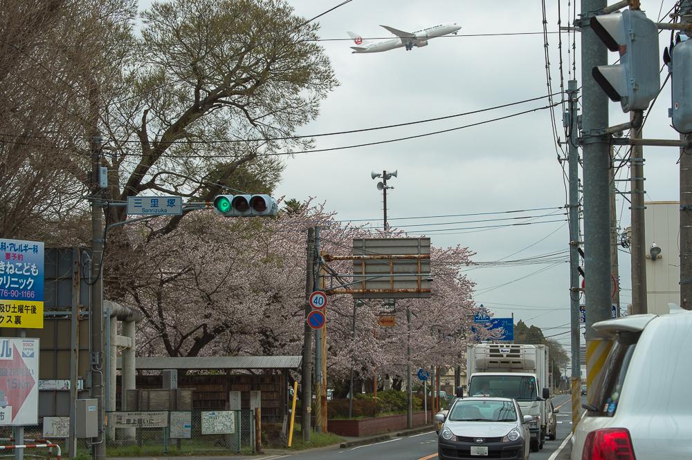 三里塚の春