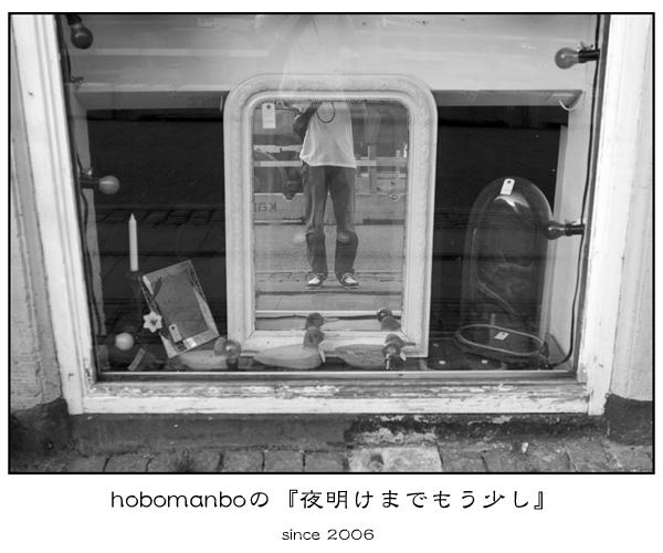 hobomanbotop4.jpg
