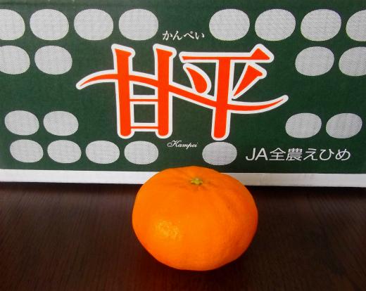 s-622-5甘平②