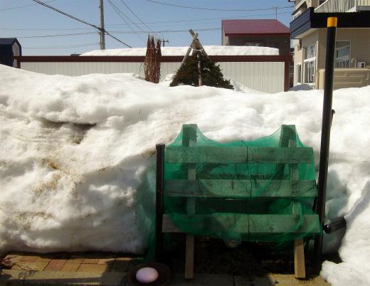 s-637-5雪囲い露出