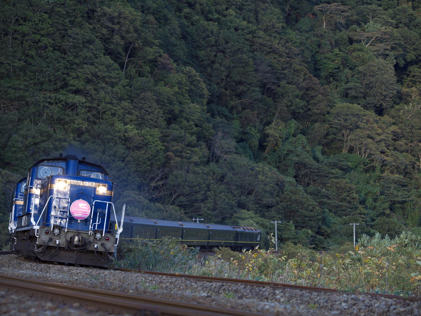 P9201292.jpg