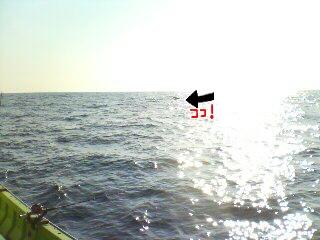 20110220042411.jpg