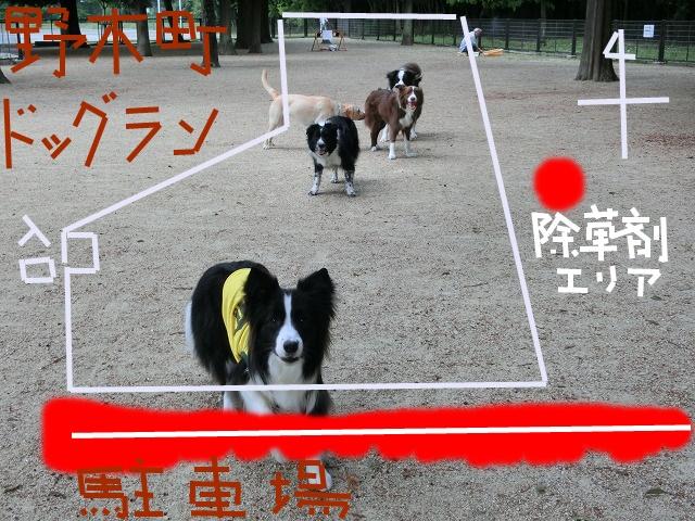 jyosouzai 2015 4