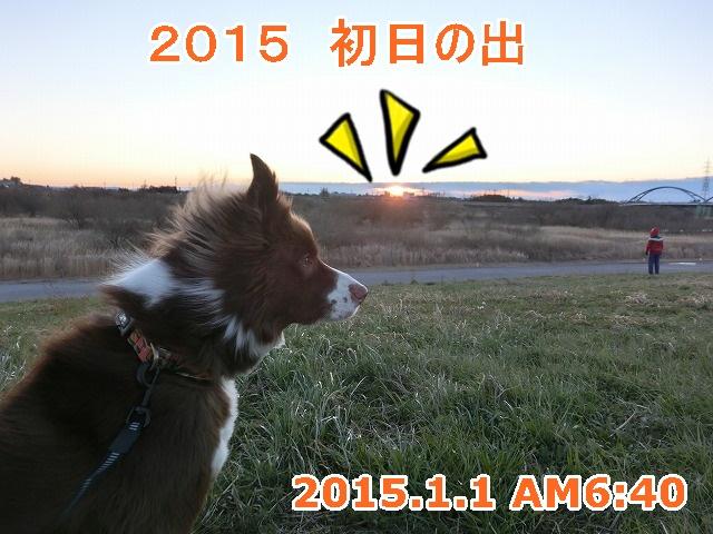 CIMG6916.jpg