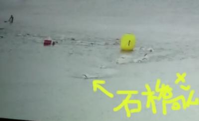 swim1-1.jpg