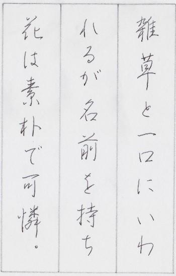 201504_加藤